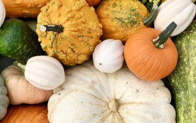 The History of Winter Squash, and Why You Should Care